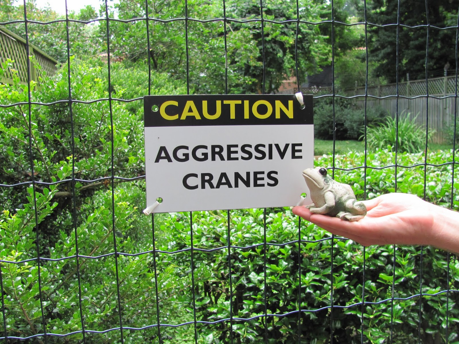 Frog reads a sign warning about aggressive cranes at the National Zoo in Washington, DC