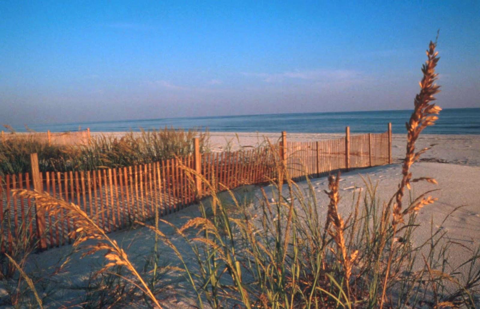 Gulf Shores AL Condos For Sale