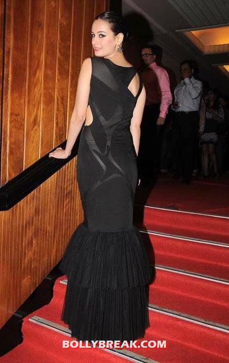Evelyn Sharma in Hot Dress - Back view - (5) - Evelyn Sharma Hottest Pics 2012