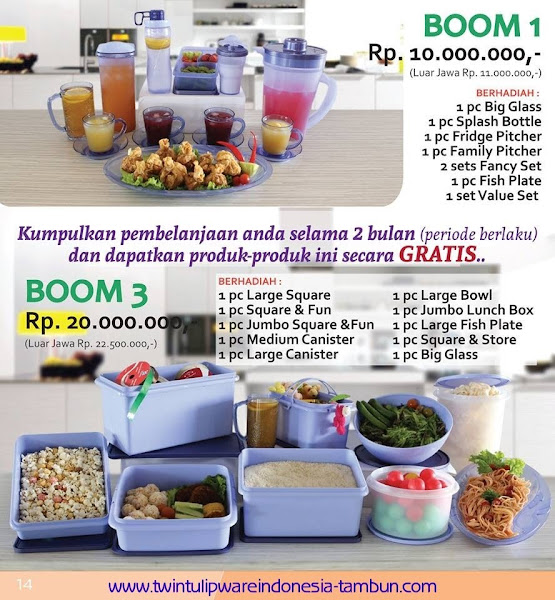 BOOM 1, 3 Twin Tulipware September - Oktober 2015