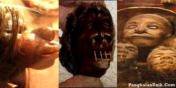 http://3.bp.blogspot.com/-GUeE6ePO6h8/T_bI6j5e2tI/AAAAAAAAU7s/RUAQPrOGykQ/s400/shrunked+head_0.jpg