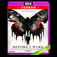 Before I Wake (2016) WEB-DL 720p Audio Ingles 5.1 Subtitulada