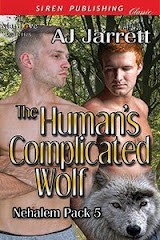 The Human's Complicated Wolf