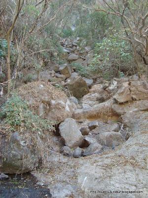 Arroyo temporal en el cañón de Matatlán