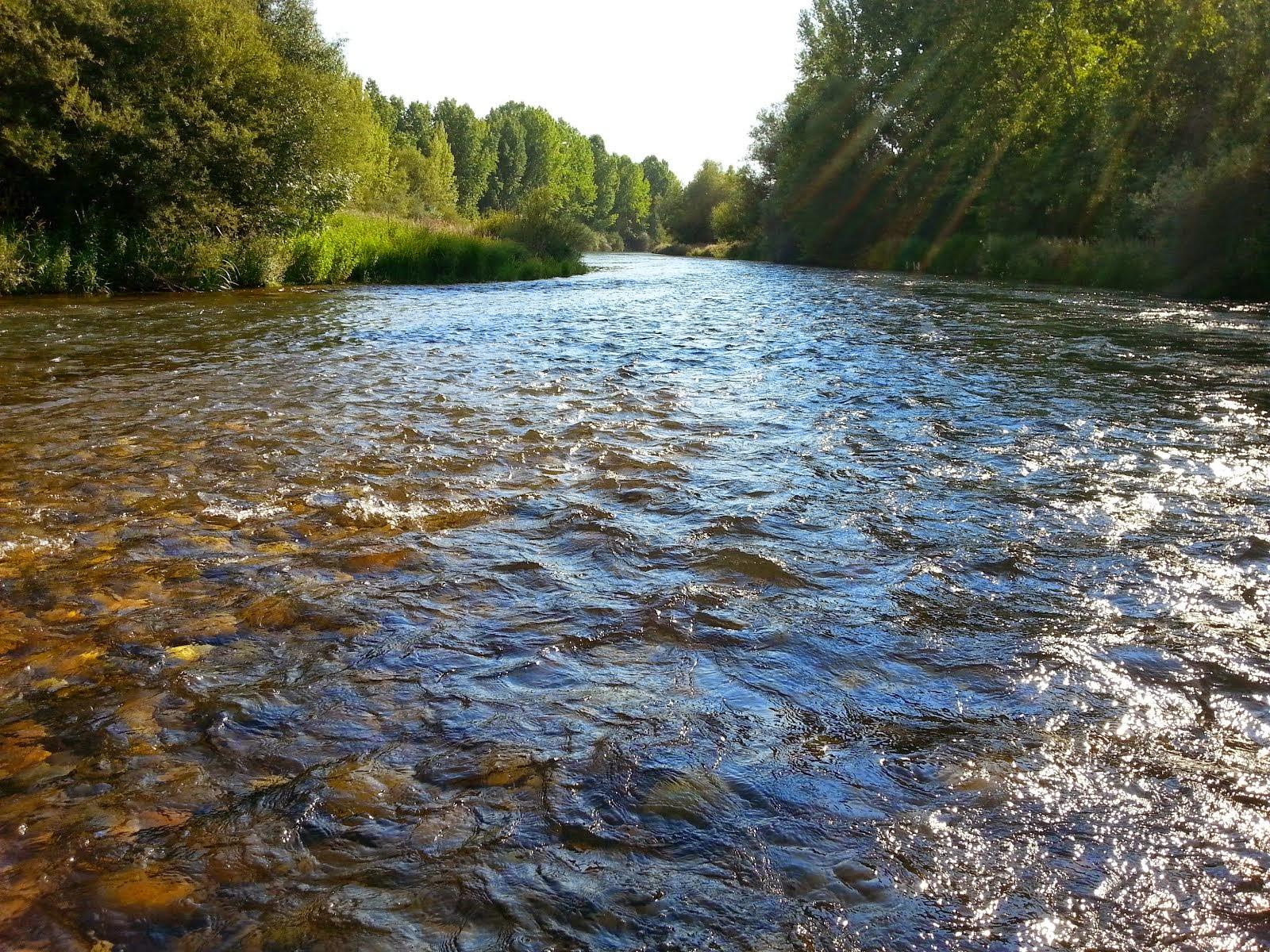 Rio Esla, a su paso por Villomar
