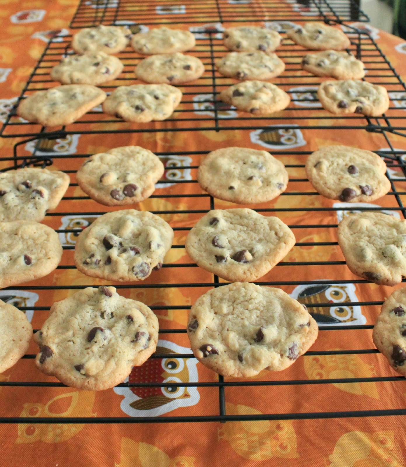 chocolate chip cookies right out of the oven! #ExtraGumMoments #shop