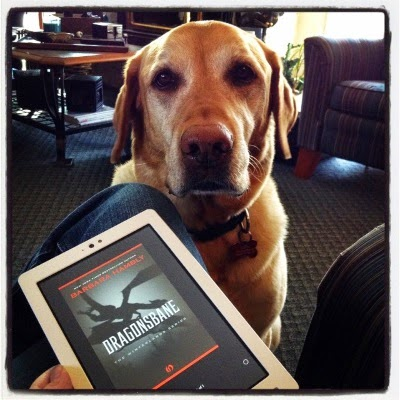 A large yellow lab, Buster, sits with his ears drooped. Before him, propped on a jeans-clad knee, is a white Kobo with Dragonsbane's grey tinted cover on its screen. The cover depicts the silhouette of a flying dragon.