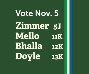 Vote Dawn Zimmer Team Nov. 5th!