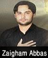 http://72jafry.blogspot.com/2014/04/zain-abbas-shah-nohay-2011-to-2015.html