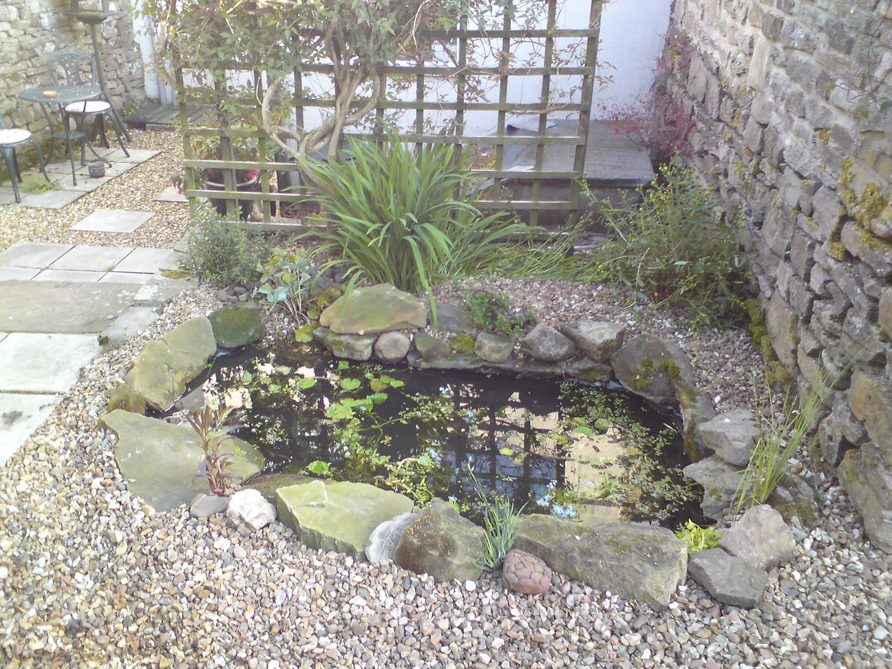 The Poorest Company Building A Wildlife Pond Part 4
