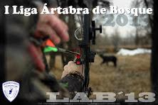 IV LIGA - LIGA ÁRTABRA