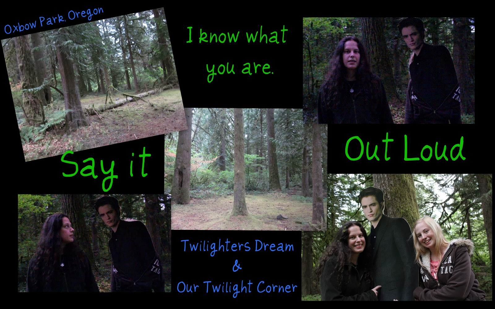 twilighters dream twi fun in the north west with our twilight corner. Black Bedroom Furniture Sets. Home Design Ideas