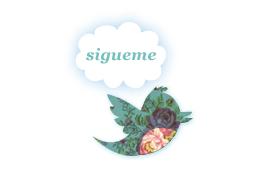 Sigueme en Twitter ♥