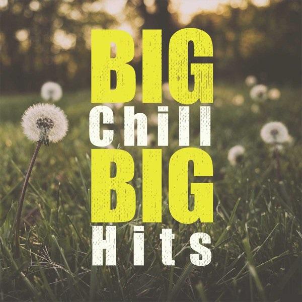 Download [Mp3]-[Album Hit] Big Chill Big Hits.. รวมเพลงฮิตสุดชิว ที่จะเปลี่ยนบรรยากาศให้ทุกวันของคุณเป็นวันแสนสบาย 4shared By Pleng-mun.com