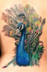 Dicas de Tatuagens de Pavão