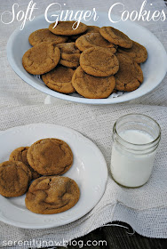 Soft Ginger Cookie Recipe (easy and inexpensive) from Serenity Now