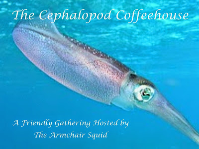 The Cephalopod Coffeehouse - September 26th