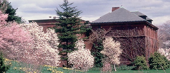 Arnold Arboretum Horticultural Library