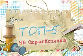 Мой домик в ТОПе )