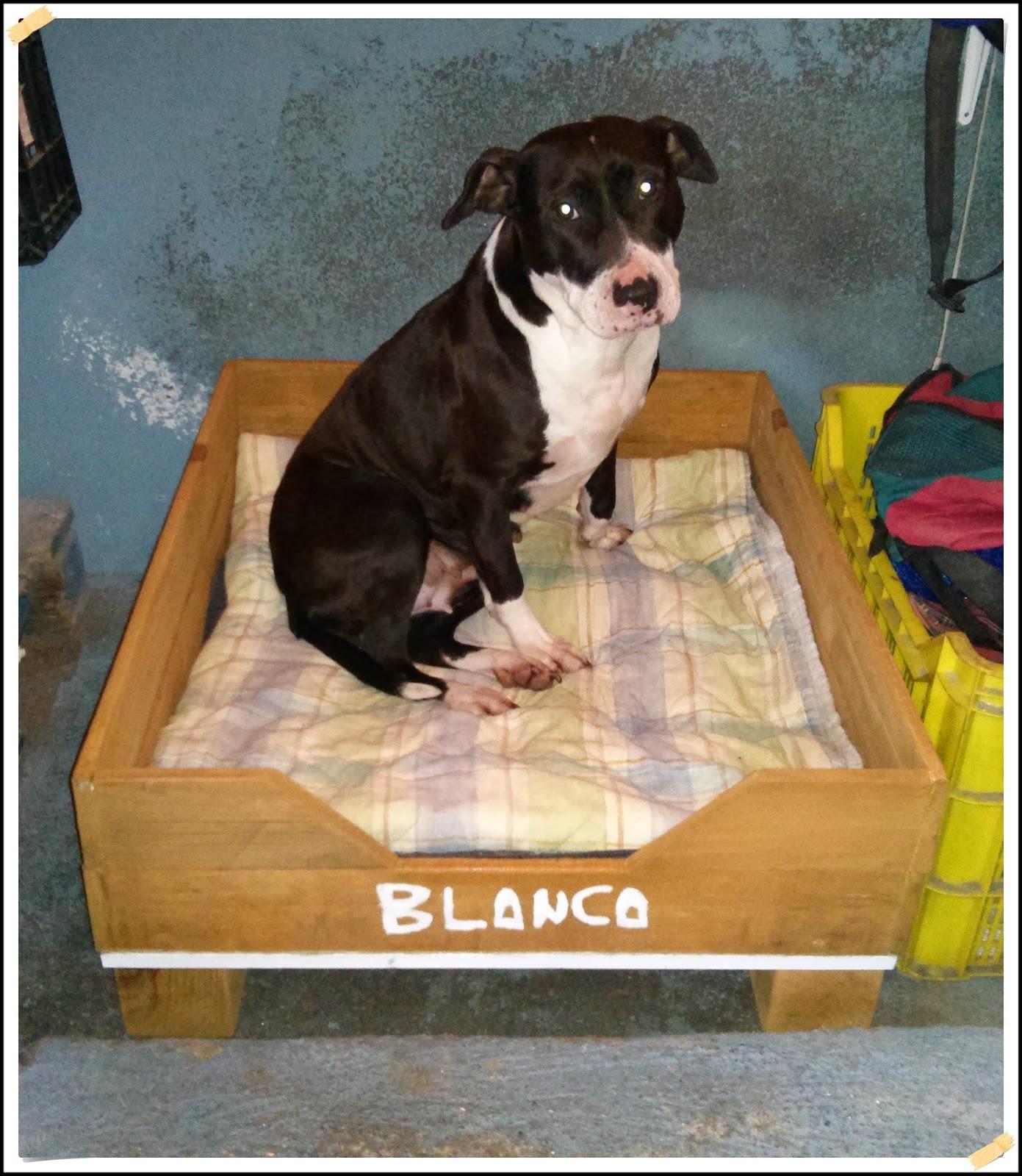 Carpinteria extrema cama para perros con madera de palets - Que hacer con palet ...