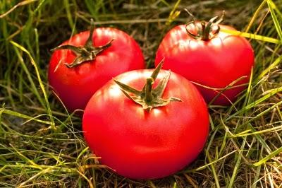 6 فوائد صحية مدهشة من الطماطم (البندورة)