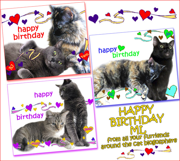 Happy Birthday Cat Pictures For Facebook