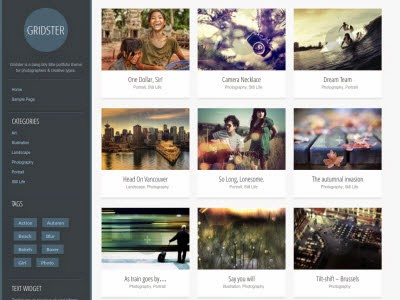 Gridster Lite WordPress Theme