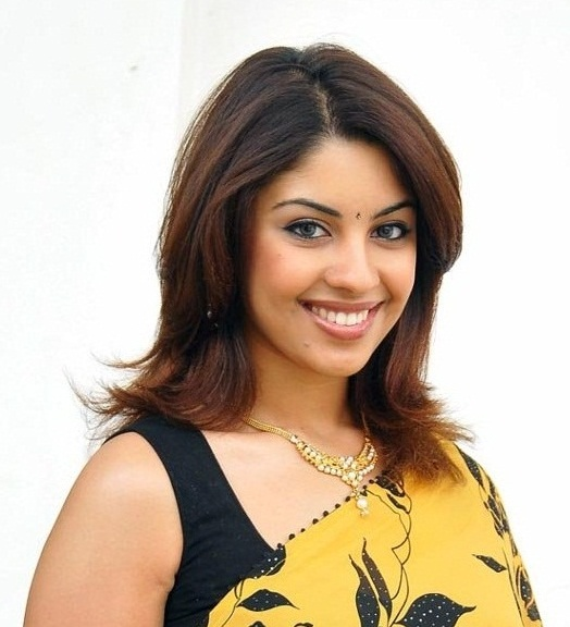 richa gangopadhyay in saree cute stills