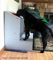 alimentador para cães