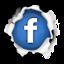 سورة البقرة - سماع وتحميل سورة البقرة كاملة Facebook_book4kids