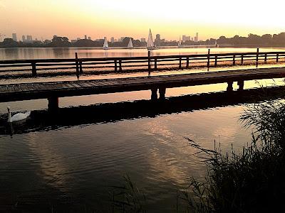 Rotterdam da Kralingse Bos