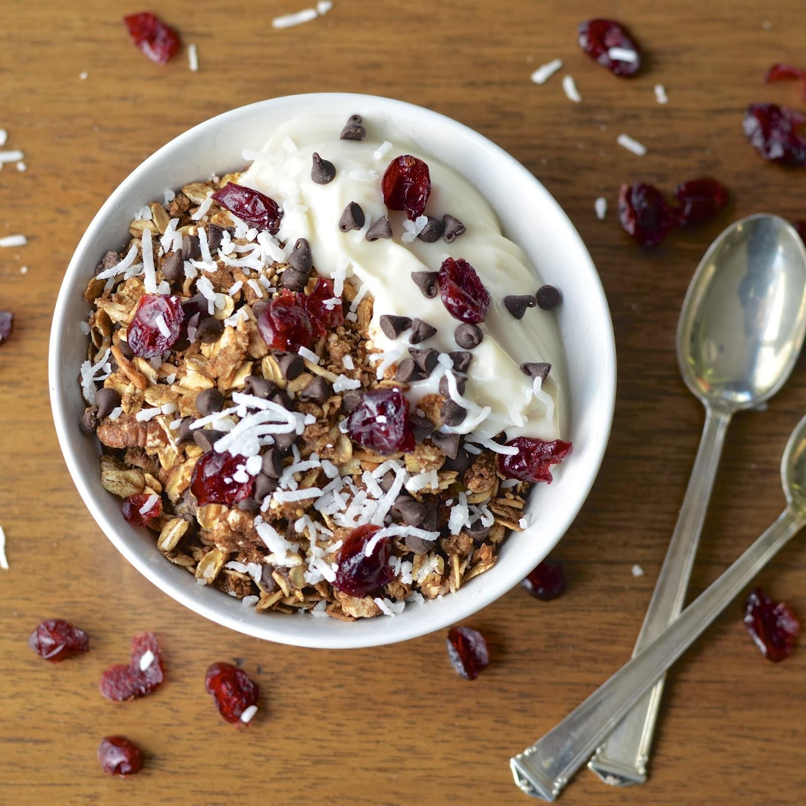 ... Yogurt Sundae | Virtually Homemade: Chocolate Cranberry Yogurt Sundae