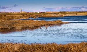 Mar-de-campos-medio-ambiente