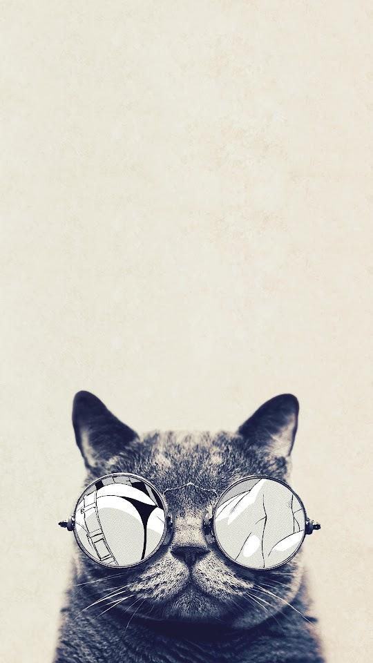 Cool Cat Glasses  Galaxy Note HD Wallpaper
