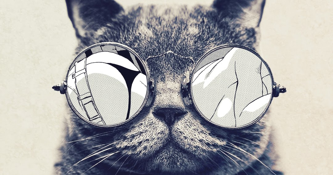 Galaxy Note HD Wallpapers Cool Cat Glasses Wallpaper