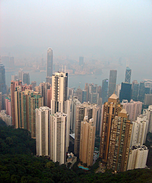 bunch of skyscrapers in hong kong