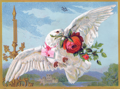 Vintage Bird Image - White Dove with Roses
