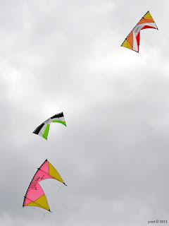 rev kites
