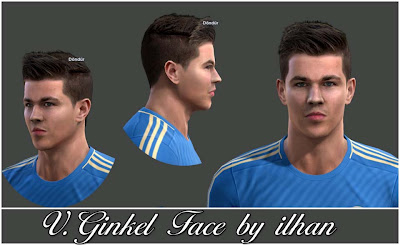 V. Ginkel Face by Ilhan