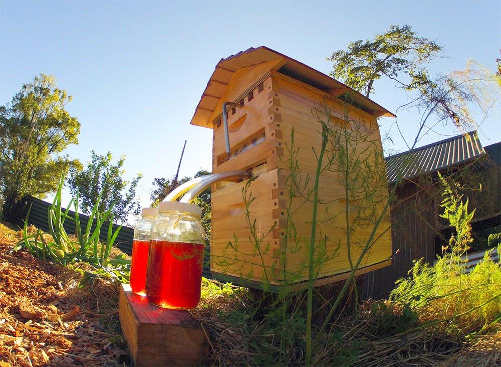 inovasi-baru-proses-ekstrasi-sari-madu-sarang-lebah-desain-ruang dan rumahku-003