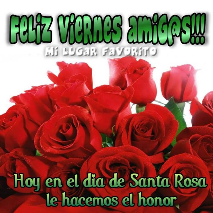 Imagenes Lindas con Frases de Amistad - vidio.com.ar