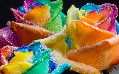 3 'قوس قزح' من أجمل الزهور التي قد تراها   حقن الزهور بصبغات مختلفة