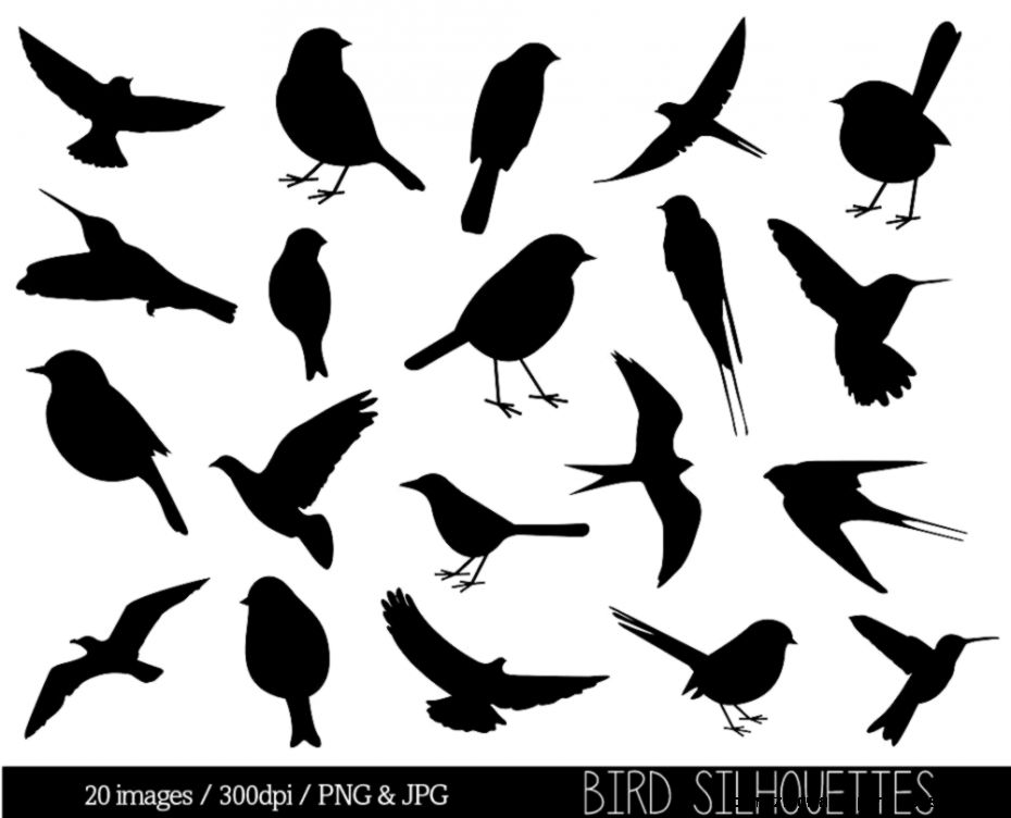 Popular items for bird silhouette on Etsy
