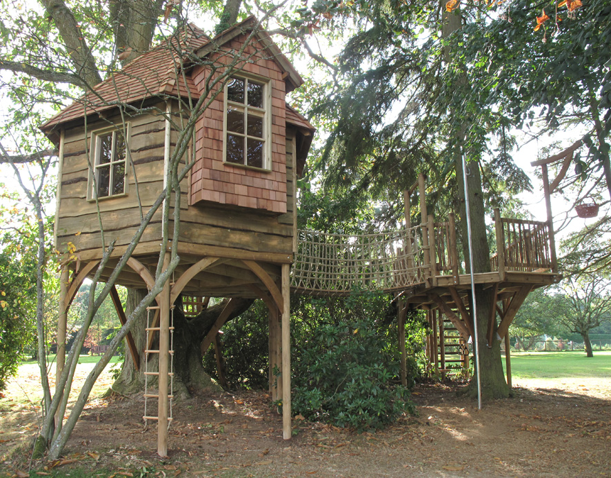 Multiple use tree house squirrel design - Tree house plans for adults ...
