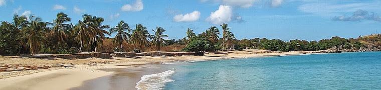 Reality Check St. Maarten - St. Martin