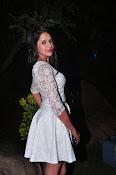 actress kshetra glam pics-thumbnail-1