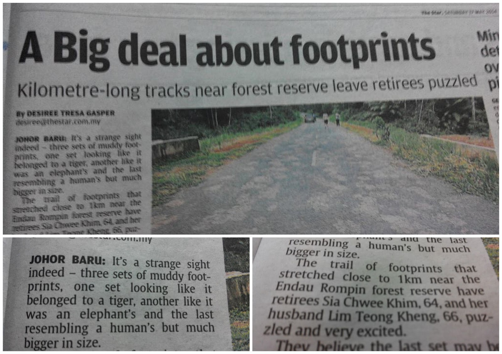 twist of fact, tapak kaki bigfoot, hutan endau rompin