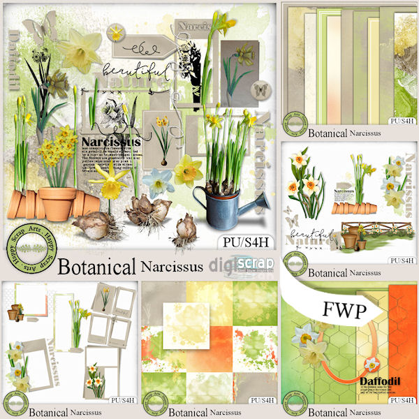 HSA_Botanical_Narcissus_bundle_pv