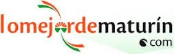 www.lomejordematurin.com