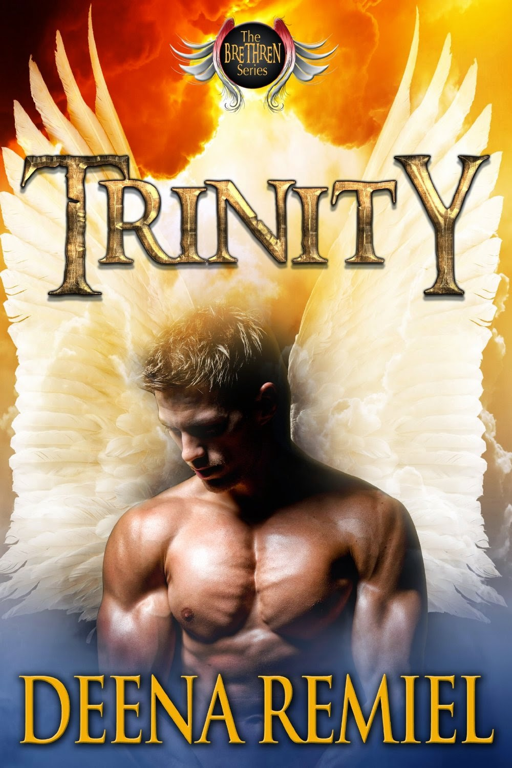 Trinity: A Brethren Novel (The Brethren) by Deena Remiel (PNR)